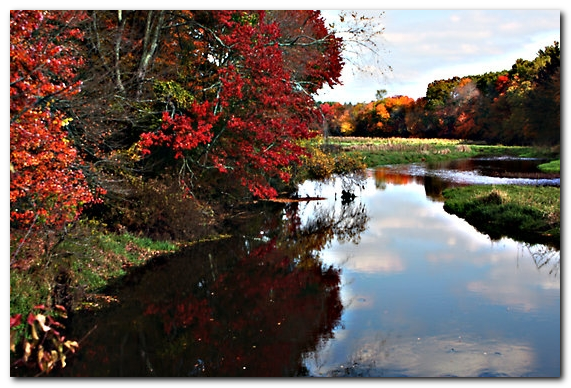 assabet river fall2